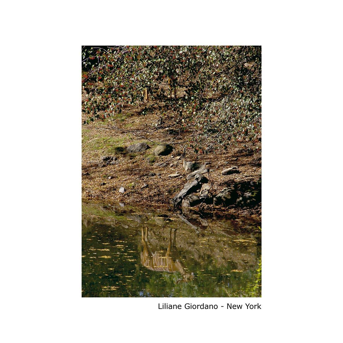 Liliane-Giordano---New-York--1