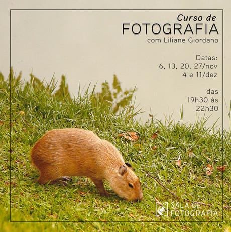 Nova turma do curso de fotografia em novembro