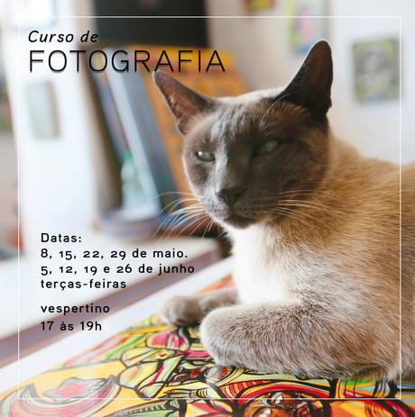 Curso de fotografia no vespertino em maio