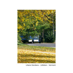 Liliane-Giordano---Littleton