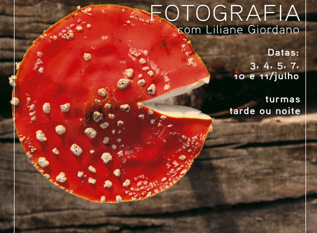 Novas turmas do curso de fotografia