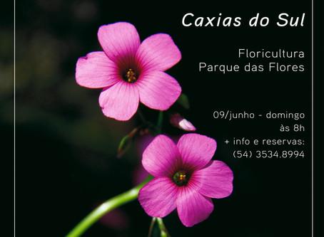 Saída fotográfica: Floricultura Parque das Flores