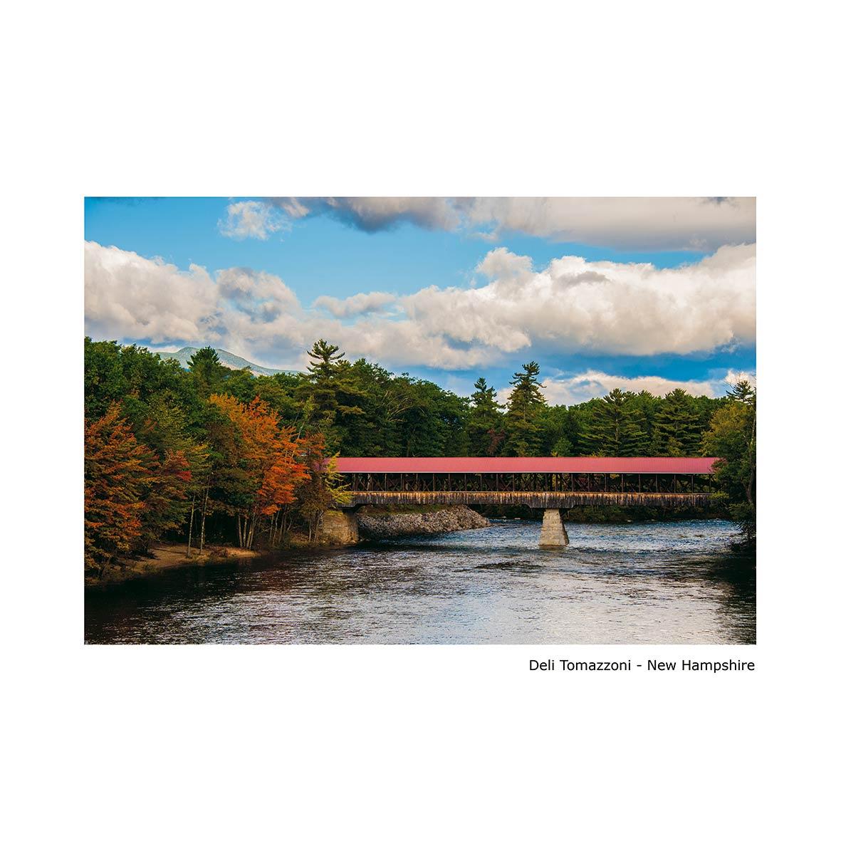 Deli-Tomazzoni---New-Hampshire