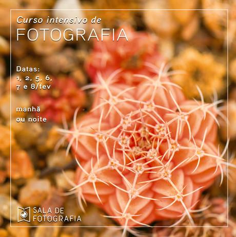 Curso de fotografia em fevereiro!