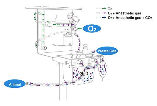 Rebreathing System Airway Diagram.jpg
