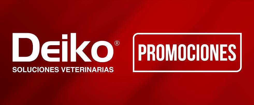 LandinPage DEIKO Promo.png
