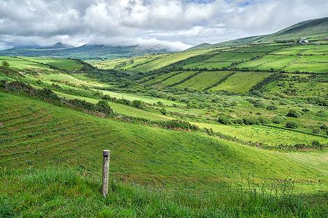 Ireland 2016-00330-Edit.jpg