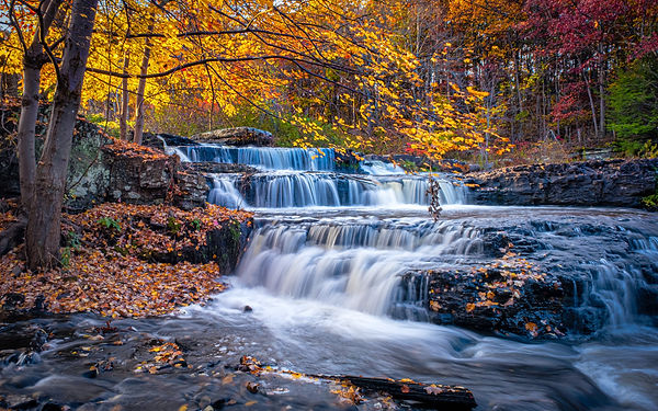 Shohola Falls Fall Foliage Scouting--2.jpg