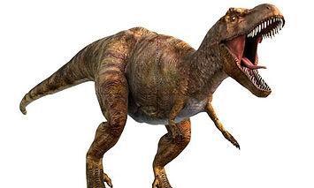 tyrannosaurus-rex.jpg
