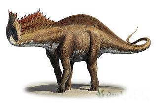 Amargasaurus.jpg