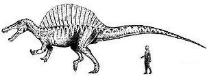 spinosaurus2.jpg