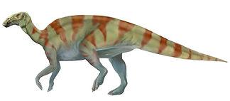 hadrosaur-008.jpg