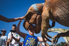 Dino Parkas Gimtadienis_WEB-156.jpg