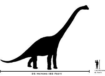 brachiosaurus2.jpg