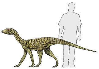 silesaurus2.jpg