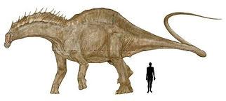 amargasaurus2.jpg