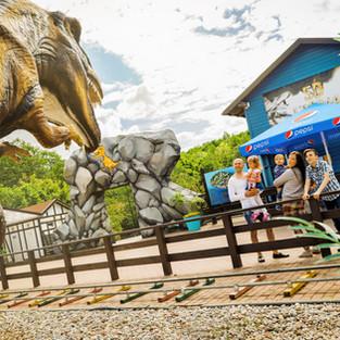 Daugiau nei 50 dinozaurų