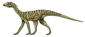 silesaurus.jpg