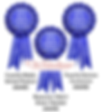 Online science and engineering course award