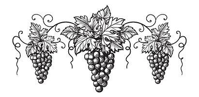 grapes logo_edited.jpg