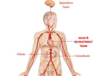 GForce Business Anatomy: Part 3 - The Heart