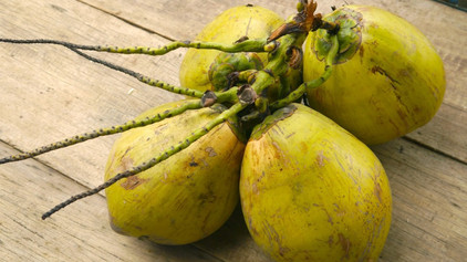 Is coconut a superfood?