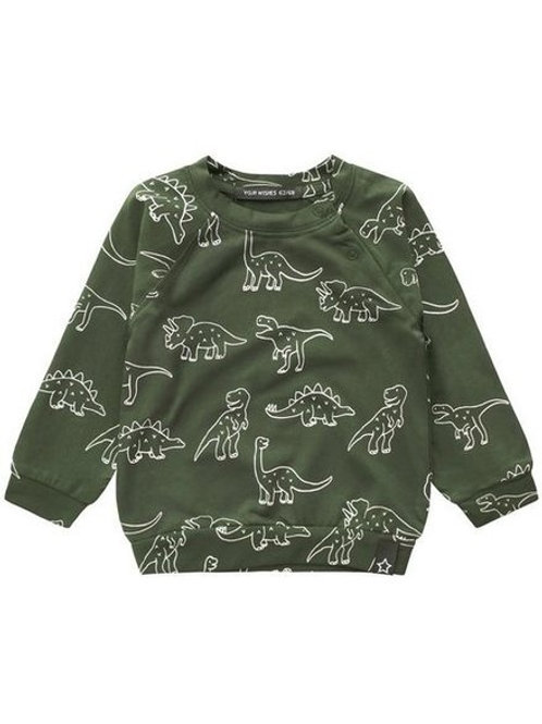 Dino sweat shirt