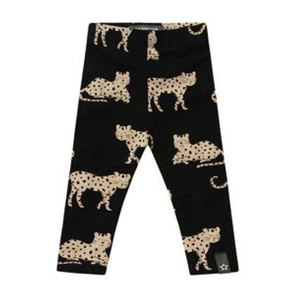 wild cheetahs legging