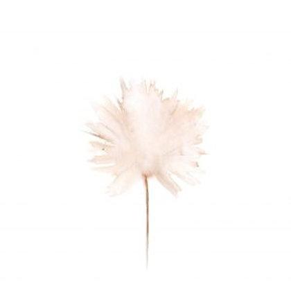 Ansichtkaart Wildflower pink