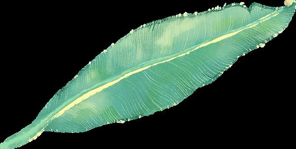 Tropikal Yaprak