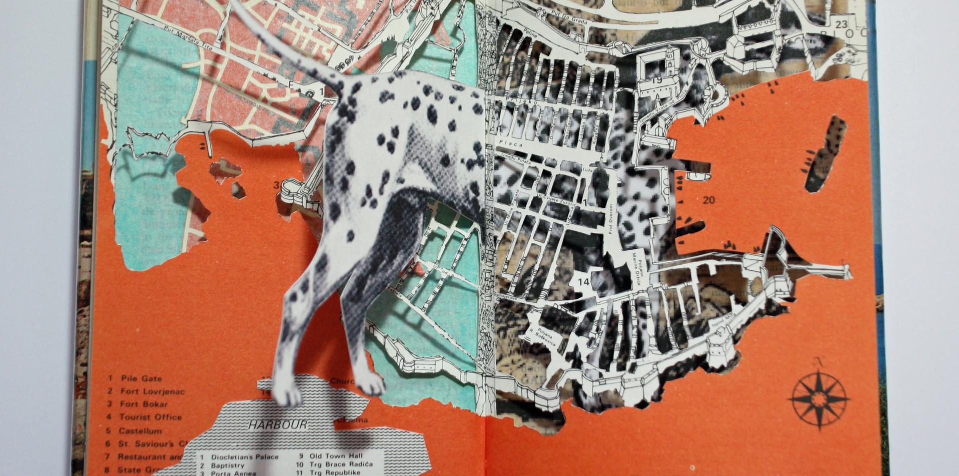 Dalmatian Split (Altered Guidebook).jpg