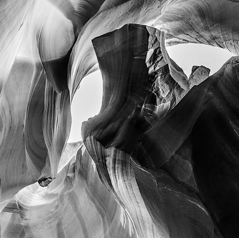 Sculpture naturelle 1