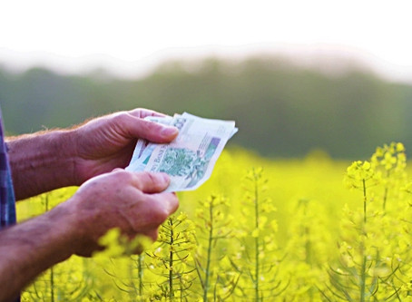 4 Ways to Earn More On Your Farm