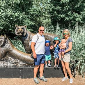 The Tulsa Zoo