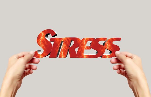 Troppo stress? Più porzioni di verdura al giorno potrebbero aiutarti a combatterlo