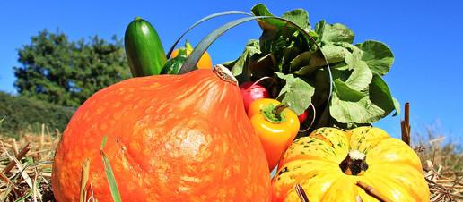 Frutta e verdura arancione contro il tumore ai polmoni