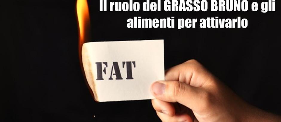 Bruciare i grassi con gli alimenti? Si, si può. La scienza dietro il ruolo del grasso bruno
