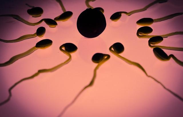 Infertilità maschile e alimentazione: ecco come può influire il cibo sulla fertilità dell'uomo