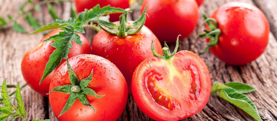 Il pomodoro, potenziale arma contro gli effetti collaterali della radioterapia