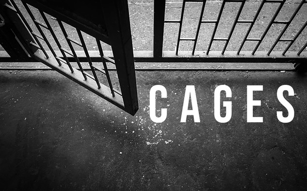 cages final.jpg