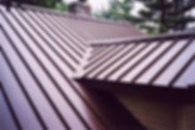 Metal Roof 2.jpg