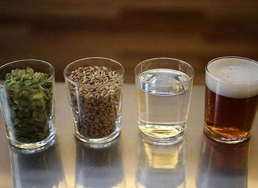 Produção de Cerveja: ingredientes