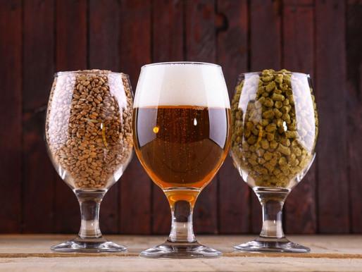 Cerveja sem glúten é boa? Vale o investimento?
