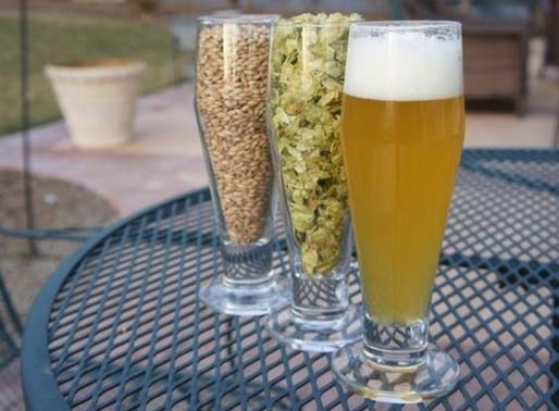 Insumos Cervejeiros: Maltes