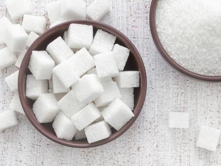 Le fructose, le diabète, les boissons sucrées et des rats sucromanes : retour sur la journée de form