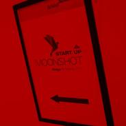 moonshot017_edited.jpg