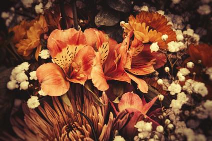 Burnt Flowers
