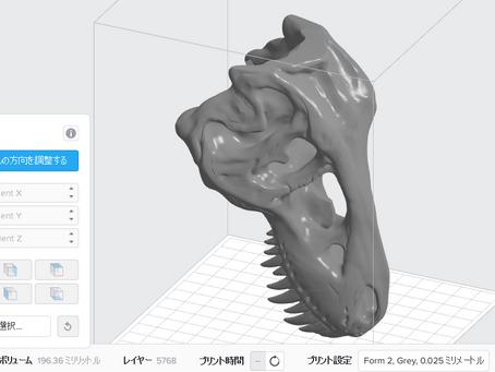 出力事例 The T-Rex Skull 恐竜の顎の骨模型 古生物学用途