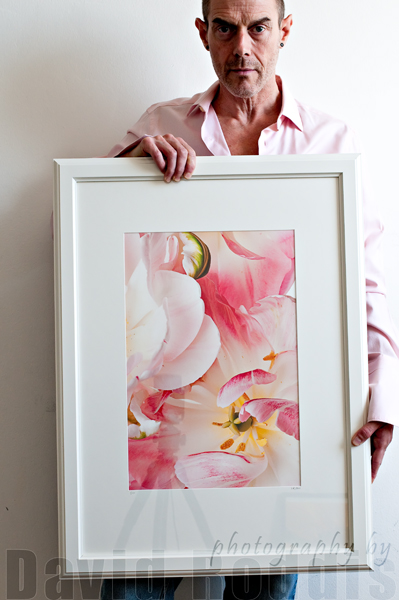 Rococo (Pink Tulips) 2011