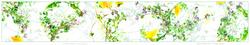 Clandestine Activity of Dandelions